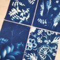 Le cyanotype : Peinture facile au soleil